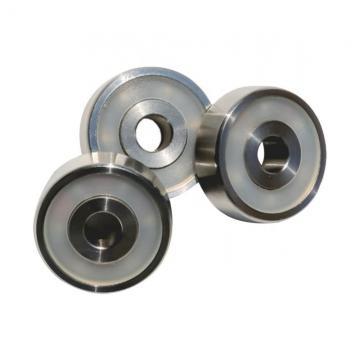 NSK Koyo IKO NTN Needle Roller Bearing Na6904